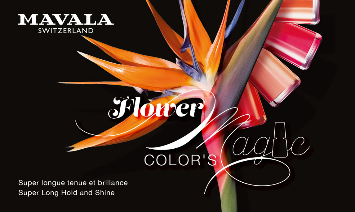 FLOWER MAGIC Color's, let the magic of colours and flowers operate !